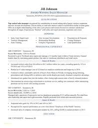 Sample Resume Format For Sales Executive Takenosumi Com