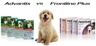 frontline plus vs advantix. Delighful Frontline Advantix Vs Frontline Plus And Vs E