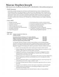 Outstanding Resume Profile Examples