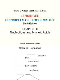 Dna and proteins from dna to proteins review (from bj): 316448 Chapter 8 Dna Rna