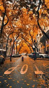 Iphone Xs Autumn Wallpaper