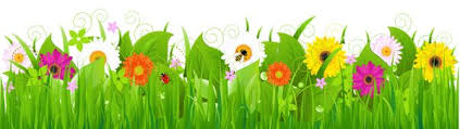 grass and flowers border. Wonderful Flowers Grass With Flowers And Bee PNG Clipart For And Border O