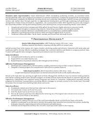 Resume Resume Samples For Sales Representative Best Inspiration