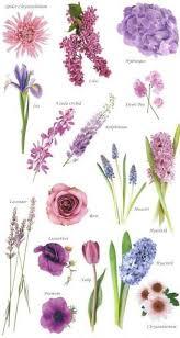 Flower Names By Color Blue Wedding Flowers Purple Wedding
