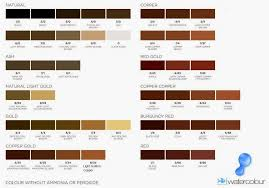 Medium Brown Hair Colour Chart Shades Medium Brown Hair Color Chart Sophie Hairstyles 33160
