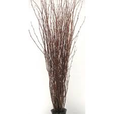 Decorative Branches / Birch Branches / Natural Birch Branches