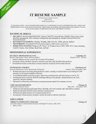 Information Technology It Resume Sample Images Photos Skills Listed