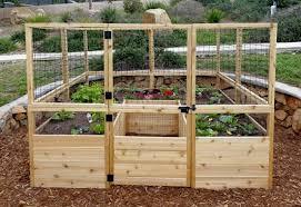 raised garden bed 8 x 8 deer fence kit