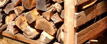 Which Wood Is Best For Firewood Tips For Eco Friendly Heat