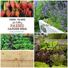 Small Picture Free Plans for Building Raised Garden Beds Empress of Dirt