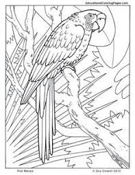 free pictures cool coloring pages to print all about free coloring pages for kids