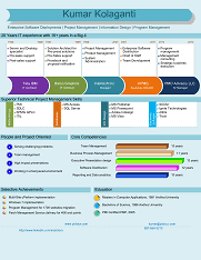 Pictocv Web Based Infographic Style Visual Resume Creator A