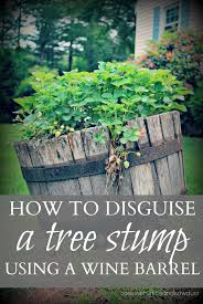 Have An Old Tree Stump Disguise It With This Fix Diy Home