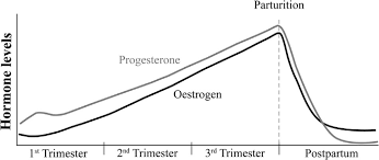 Estrogen And Progesterone Levels In Pregnancy Chart Estrogen And Progesterone Levels During Pregnancy And After