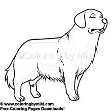 Dogs Retriever Coloring Page 1102 Coloring By Miki