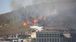 İstanbul'da askeri kışladaki ağaçlık alanda yangın - Son dakika haberleri