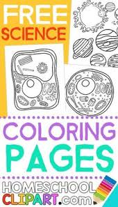 Small Picture Free Science Coloring Pages Notebooking Pages Charts Worksheets