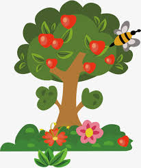fruit tree clipart. Wonderful Fruit Fruit Tree Material Picture Tree Clipart Vector Fruit Tree Trees PNG And  Inside Clipart F