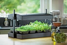 indoor herb garden kit 3 gardener s supply company my greens light garden