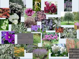 Small Picture 4 Mood Board Osmosis Garden Design