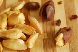 Hasil gambar untuk kacang kenari