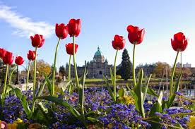 butchart gardens tours. 2-Day Victoria And Butchart Gardens Tour With Overnight At The Inn Laurel Point Tours