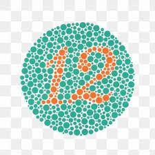Ishihara Test Color Blindness Color Vision Eye Visual
