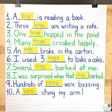 Singular And Plural Nouns Chart Singular Plural Lesson Plan How To Templates And For