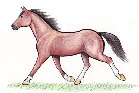 trotting horse drawing. Plain Trotting Trotting Horse By CrawdadEmily  To Horse Drawing I