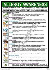 Food Allergy Awareness A3 Laminated Poster