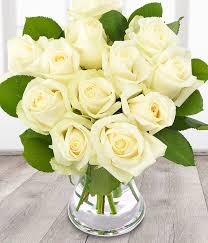 12 white roses white rose bouquet