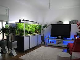 fish tank stand design ideas office aquarium. Modern Fish Tank Stand Ideas Anna Design For 11 Office Aquarium Y