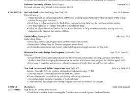My Resume Builder Resume My Resume Builder Copper Kitchen Sink Worker Resume 91