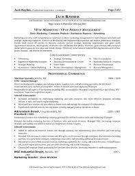 best vp of marketing resume template .
