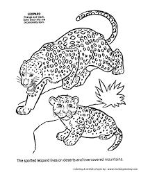 Leopard Coloring Pages To Print Jokingartcom Leopard Coloring Pages