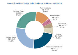 Us Debt Pie Chart 2018 Brazils Debt Clock Despite Strong Income National Debt Is