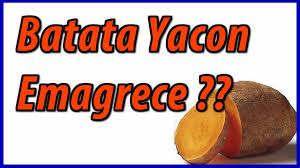 Resultado de imagem para IMAGENS DE RECEITAS COM YACON