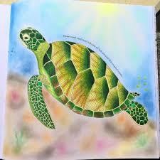 Small Picture turtle adultcoloring adultcoloringbook tropicalwonderland