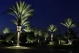 furniture palm tree ring light roto lite inc led landscape lighting outdoor lights view