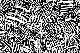 Zebra Patterns Interesting 48 Zebra Patterns Free PAT PNG Vector EPS Format Download