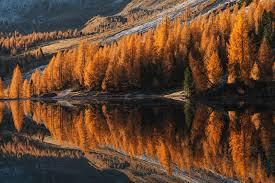 11 Tips for Amazing Autumn Photography | Iceland Photo Tours