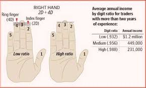 2d 4d Ratio Chart Digit Ratio News Finger Length The 2d 4d Digit Ratio 63