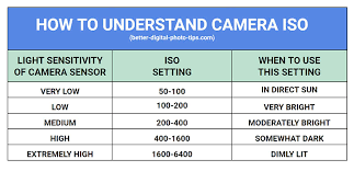 Camera Iso Chart Auto Iso Faq 9 Questions And Answers On This Under Used