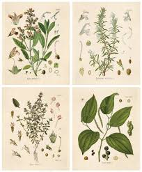 articles with garden wall art ideas tag herb wall art pictures with regard to