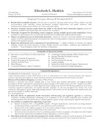 Non Profit Board Of Directors Resume Sample Non Profit Resume