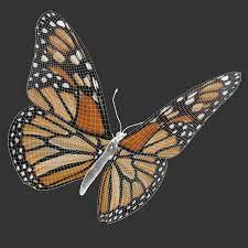 JK-66, 3D Butterfly   on the desktop Sybil Bird