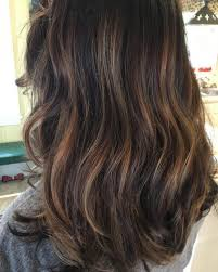 soft caramel highlights soft caramel highlights for dark brown hair