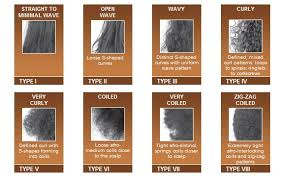 Black Natural Hair Types Chart 26 Expository Hair Texture Chart For African Americans