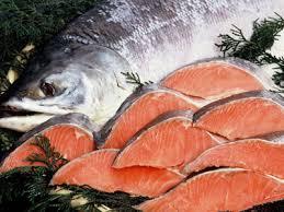 「鮭 画像 フリー」の画像検索結果