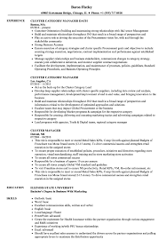 Resume Example For Manager Position Best Of Cluster Manager Resume Samples Velvet Jobs